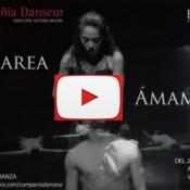 Danseur Youtube
