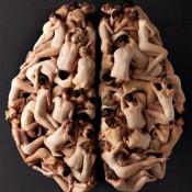 Cerebro de un bailarin