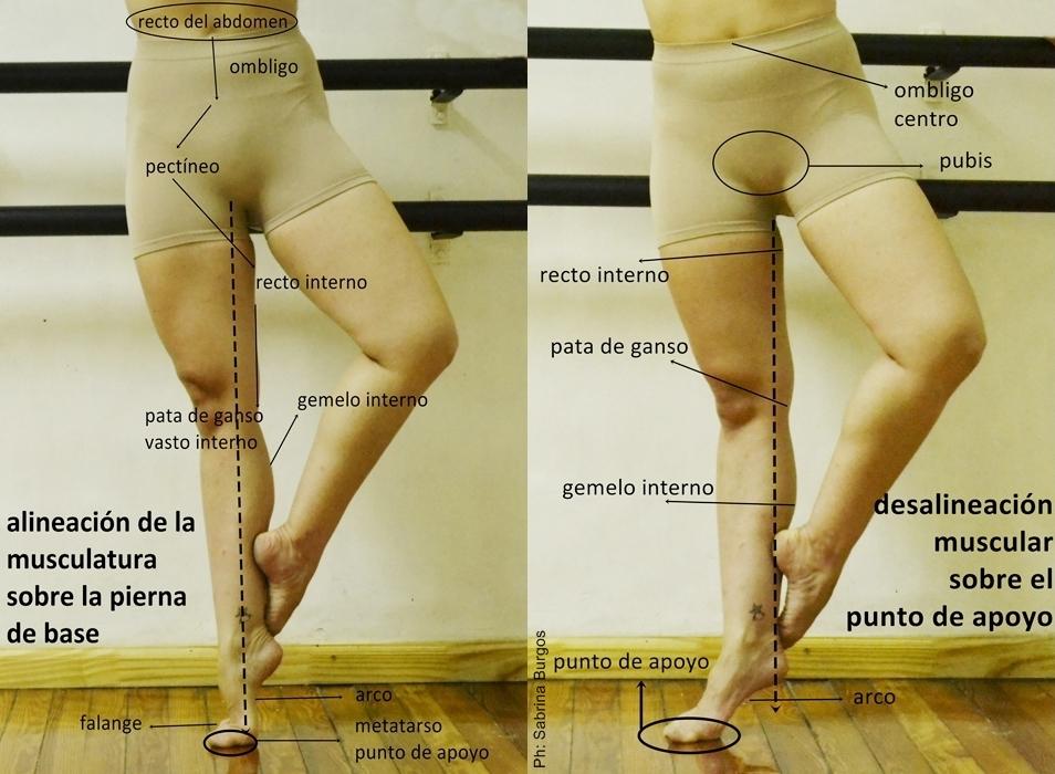 El eje: pierna de base y puntos de apoyo | Revol - Revista de Danza